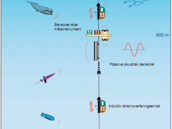 An ocean observatory anchored to the sea bed could look like this. Various scientific monitoring instruments can provide hour-by-hour observations, year round. Click on the magnifying glass for an enlargement. (Illustration: Norwegian Ocean Observatory Network/NOON).