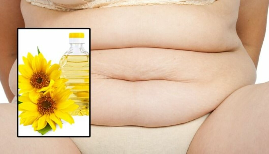 Soya oil, maiz oil and sunflower oil promotes weight gain. (Photo: Colourbox)