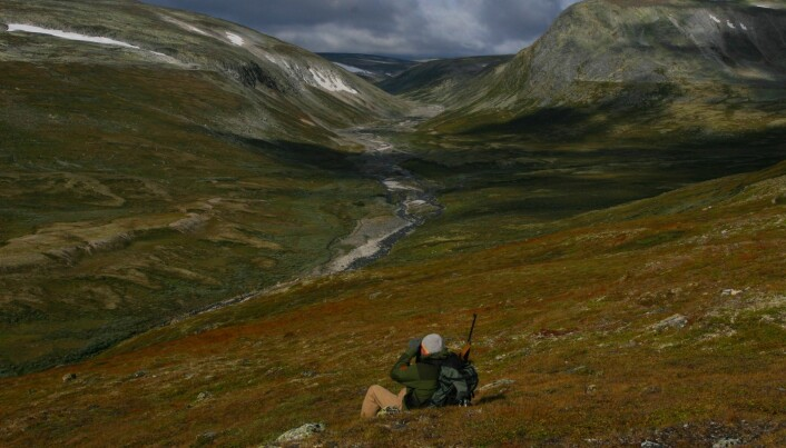 """Hunters as """"stewards of the land"""""""