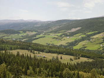 The cultivated landscape of Gudbrandsdalen as it appears today, with current agriculture. (Photo: Anders Bryn)