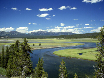 Yellowstone National Park is visited by nearly three million people a year, yet vast tracts of the park can still be designated as classic virgin wilderness. (Photo: Ed Austin/Herb Jones)