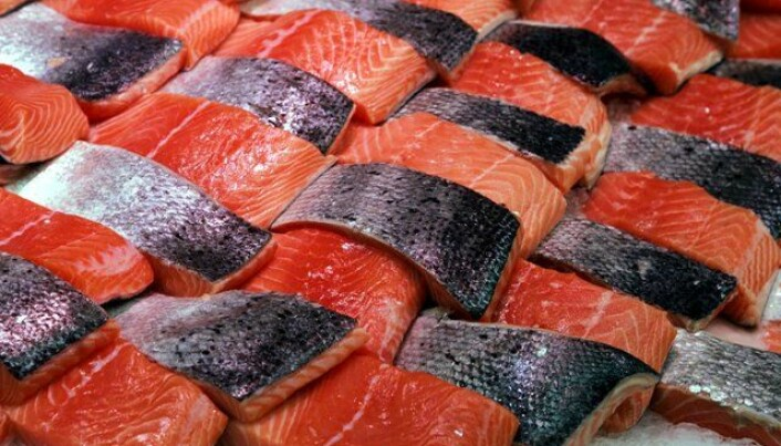 Salmon becomes what it eats