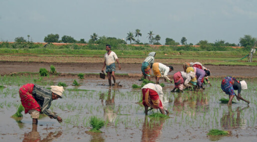 Norway and India collaborate for versatile farming