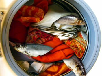 Fish stocks can clean socks. (Photo manipulation: Per Byhring/Colourbox)