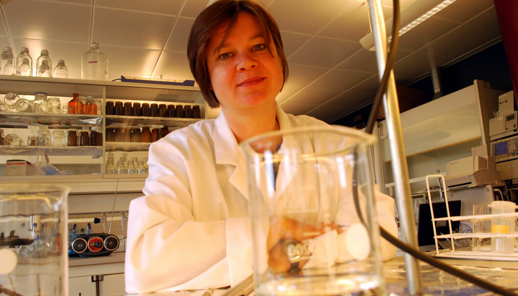 In a laboratory at the FRAM Centre in Tromsø, Dorte Herzke, senior research scientist at NILU, is trying to solve the mystery of where the mysterious PFAS come from. (Photo: Helge M. Markusson, FRAM Centre.)