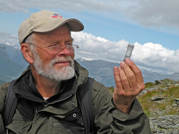 Arne Fjellberg hunts spiders in the mountains of Norway. (Photo: private)
