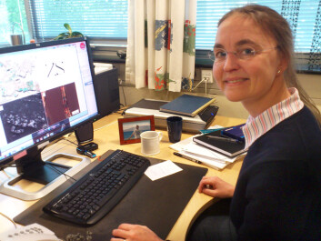Professor Bodil Holst of the University of Bergen. (Photo: Andreas R. Graven)