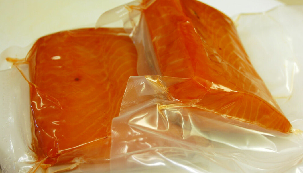 Vacuum-packed salmon at the Nofima laboratory. Organic farmed salmon is pictured on the right. (Photo: Preben Forberg)