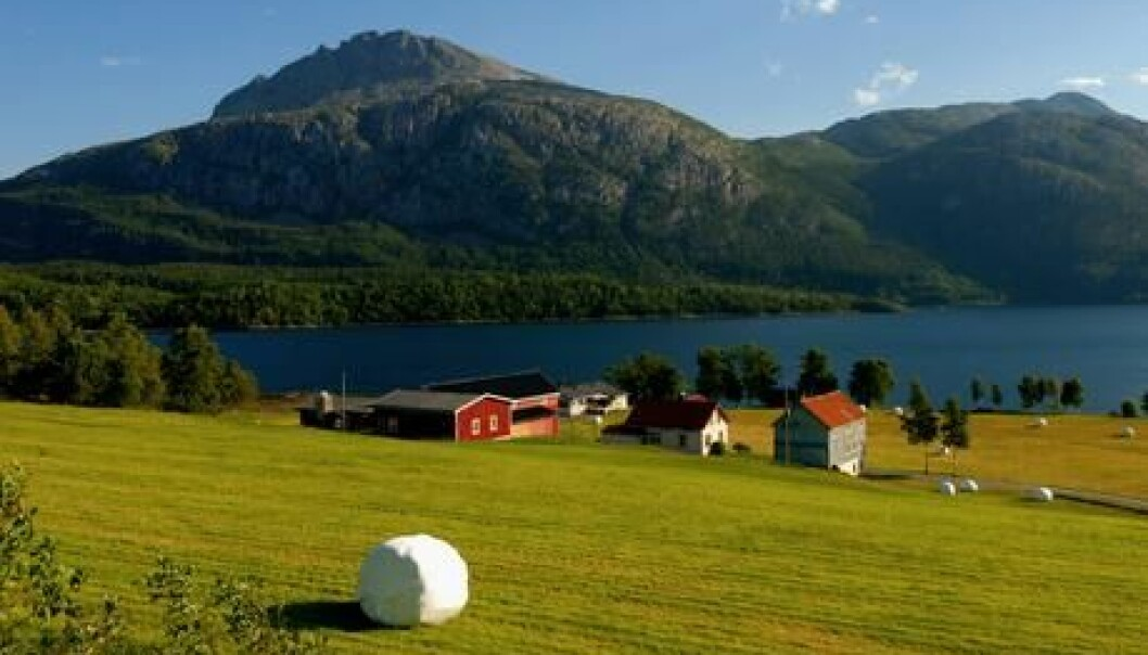 Across much of Norway, the agricultural growing season could become up to two months longer due to climate change. (Photo: Colourbox)