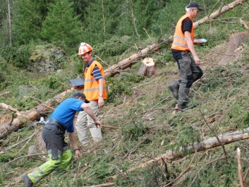 This is research with human guinea pigs. A logger (in blue T-shirt) tries out the equipment while two researchers monitor pulse rates and work efficiency. (Photo: Morten Nitteberg)