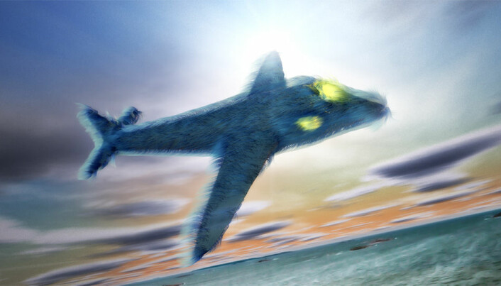 Future airplanes might be furry