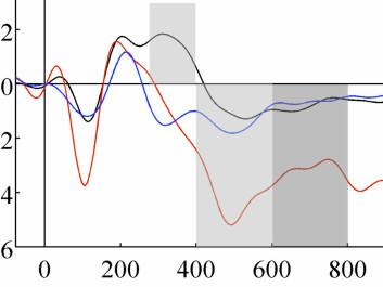 "EEG from the frontal lobes of a brain following a ""novelty"" sound at the time =0 on the horizontal axis. The black curve shows a normal ""novelty"" response around 300-400 milliseconds, whereas the blue curve shows the response from a brain with frontal lobe damage. (Figure: Marianne Løvstad/Journal of Cognitive Neuroscience)"