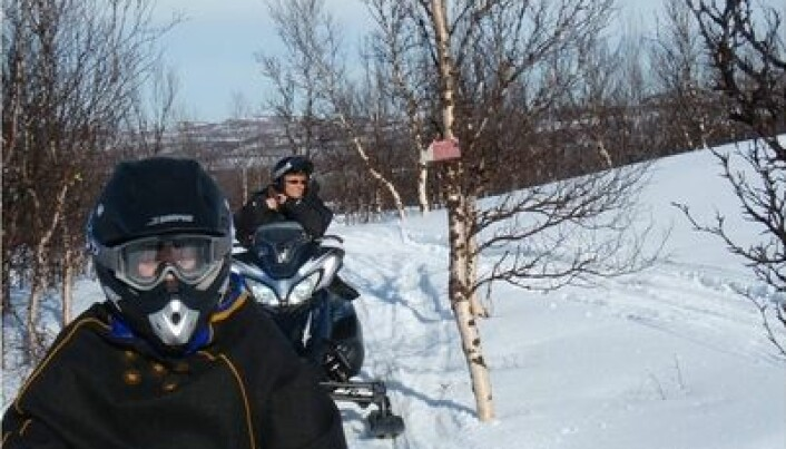 Young people want snowmobile cops