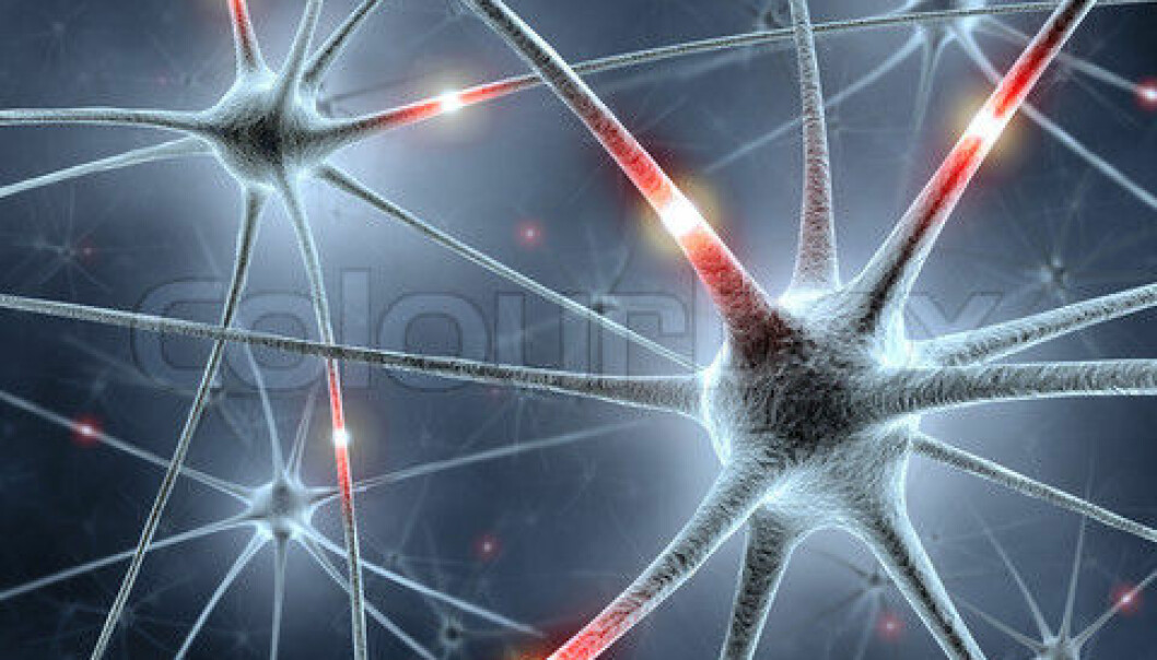 Our brains contain more than 100,000 billion synapses. (Illustration photo: Colourbox)