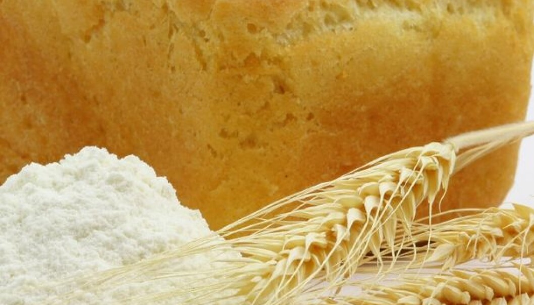 Healthy new whole grain products requires closer collaboration between research centres, grain producers, millers, bakers and consumers. (Photo: Colourbox)