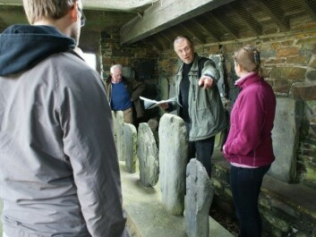 Runologist Terje Spurkland, second from right, on the Isle of Man, in his proper element amidst a collection of Norwegian runestones, The stones were erected by Vikings in the 900s. (Private photo)