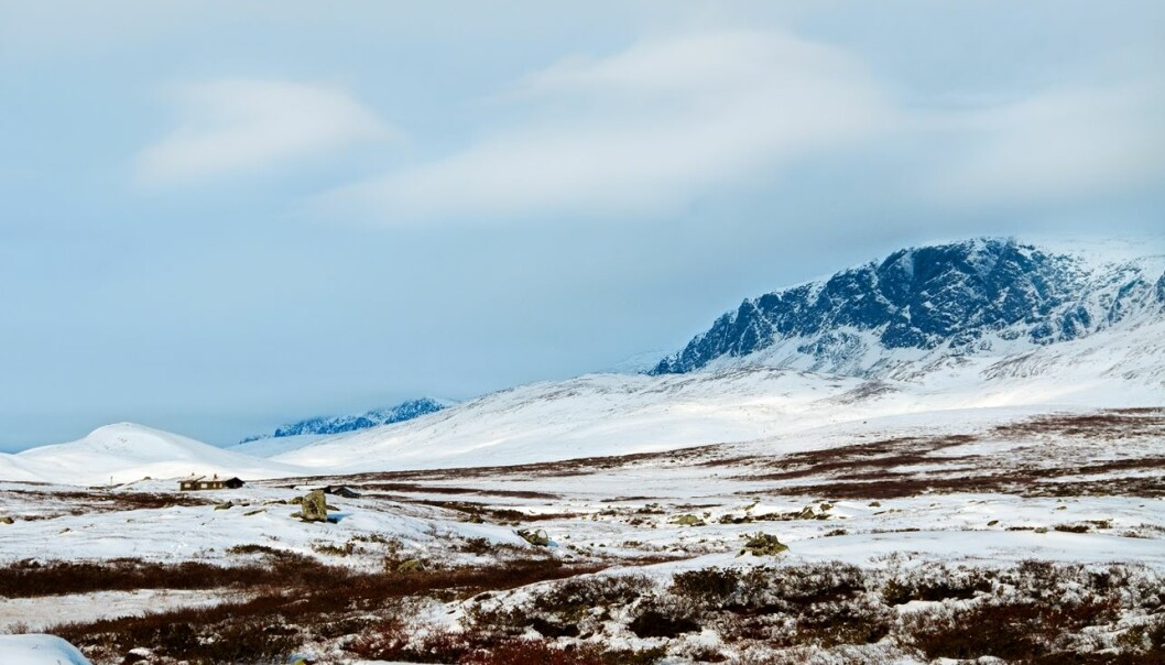 Is a mountain plateau like Norway's Hardangervidda ancient seabed that has been uplifted, or has it been scraped smooth by glaciers? A new study suggests the latter. (Photo: Colourbox)