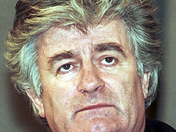 Radovan Karadzic is accused of war crimes against Bosnian Muslims and Bosnian Croats during the Siege of Sarajevo, as well as ordering the Srebrenica massacre. (Photo: Mikhail Evstafiev/Wikipedia commons)