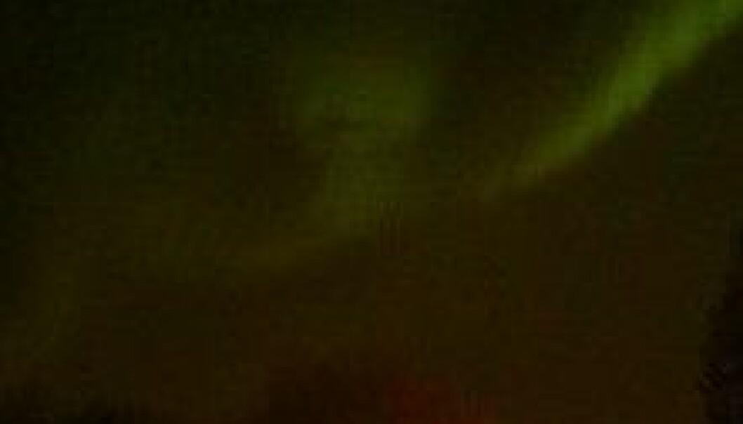 Northern lights above Trondheim Monday night (Photo: Lyubomir Ahtapodov og Yana Panova)