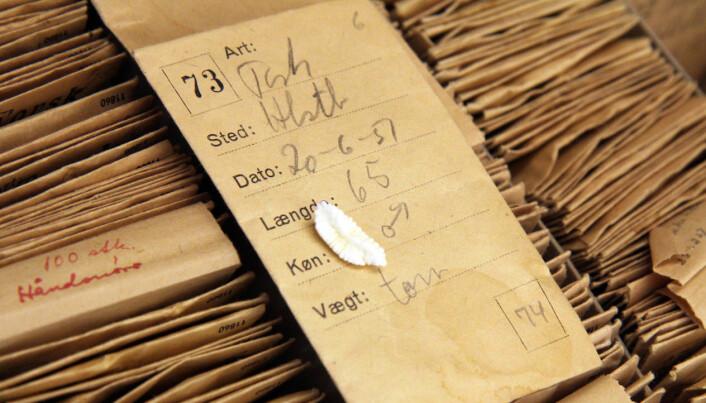 DNA test rewrites history of Greenland cod