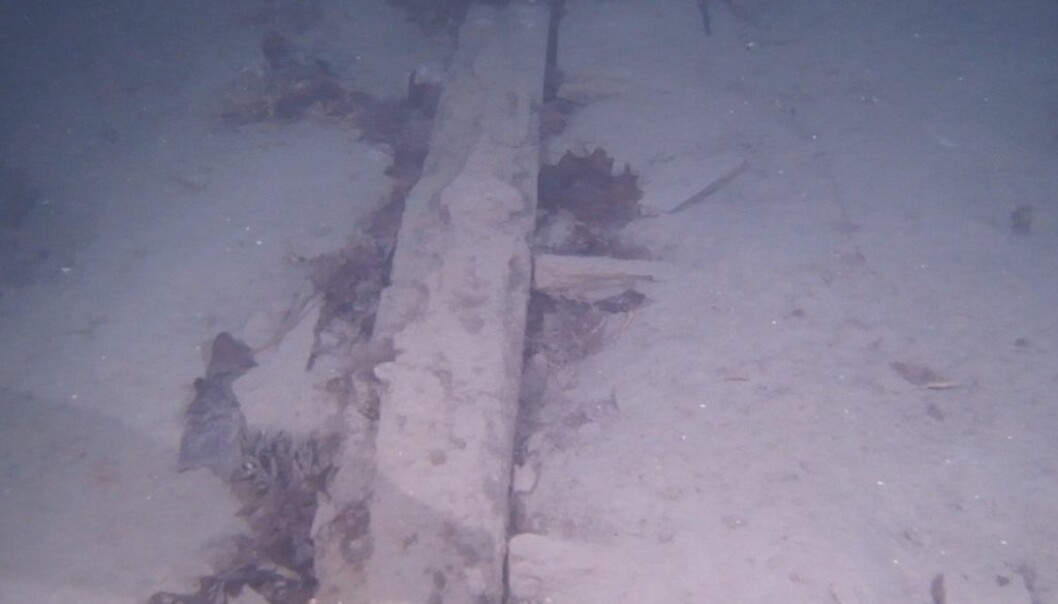 Part of a wreck found in the fjord outside Trondheim in December. The picture is from a video in HD revealing its keel and ribs. No artefacts have been found near this wreck yet to indicate its age, but researchers think it's from 17th or 18th century. The shipwreck is at a depth of 80 metres and is typical of the way wooden wrecks appear after centuries on the sea floor. (Photo: Trondheim Science Museum)