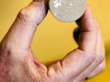 One of the planet's fever-reducing pills: porous sandstone found in abundance on the sea floor. (Photo: Ole Morten Melgård/NTNU Info)