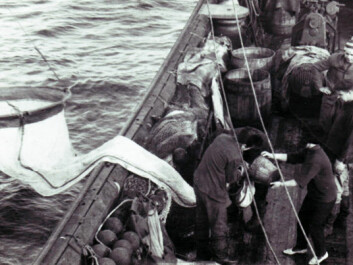 Soviet scientists used ring trawl nets to collect cod eggs and zooplankton. (Photo: PINRO)