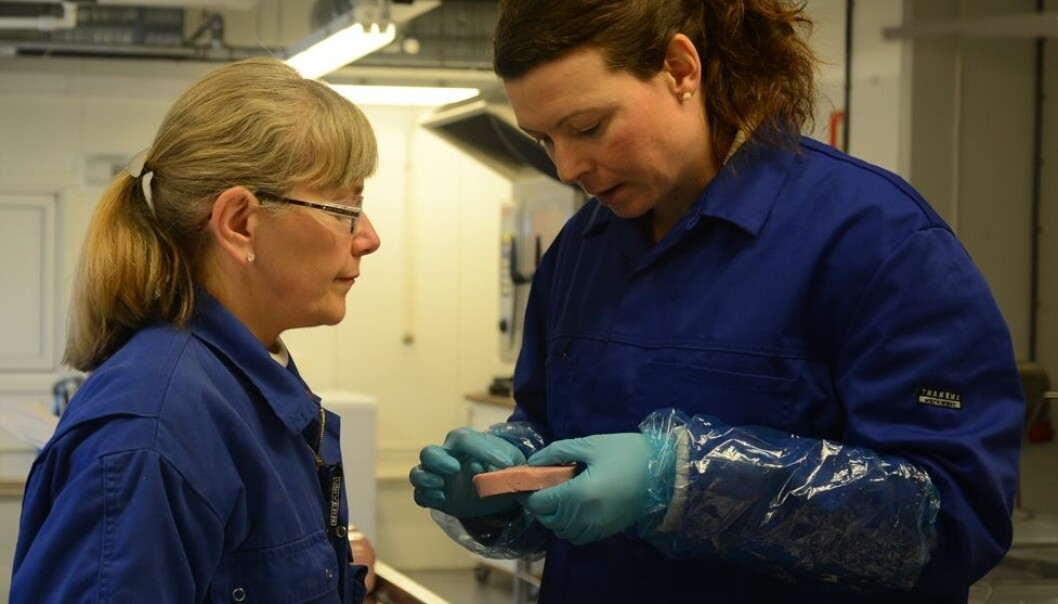 Researchers Marte Schei (left) and Kirsti Greiff of SINTEF Fisheries and Aquaculture are studying the sodium content of cooked ham. (Photo: SINTEF)