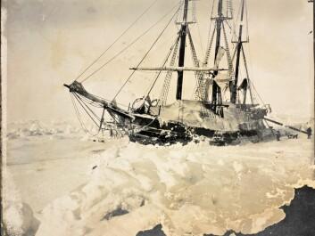 The Fram, frozen into the ice, March 1895. (Photo: Fridtjof Nansen/from the Norwegian National Library, bldsa_q3c013)