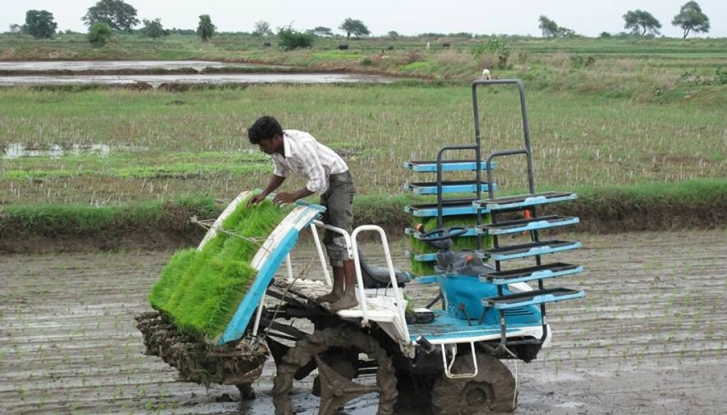 A mechanical transplanter in operation in Andhra Pradesh. (Photo: Ragnar Våga Pedersen, Bioforsk)