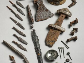 An overview of some of the finds that archaeologists say suggest the presence of a large trading town dating from the Viking age in Steinkjer, north of Trondheim. The three small round knobs on the lower right of the picture are silver buttons that archaeologists believe came from Britain. (Photo: Åge Hojem)