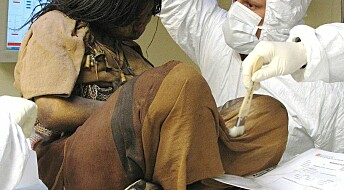 Inca kids drugged before being sacrificed