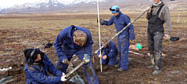 Wet tundra can also capture carbon