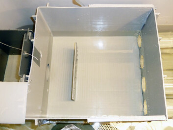 The cognitive abilities of juvenile salmon were tested by lowering a labyrinthine obstacle into their tub. The fish started in the box to the left and had to pass through the main compartment and then through one of the four exits at the rear. Only one of these was open and the fish had to determine which one was correct.  (Photo: Anne Gro Vea Salvanes)