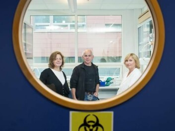 The microorganisms in the ocean have only hours in which to multiply before being eaten or infected by virus. The MicroPolar team (left to right) Aud Larsen, Gunnar Bratbak and Ruth-Anne Sandaa examine how the interaction between the organisms happens. (Photo: Eivind Senneset)