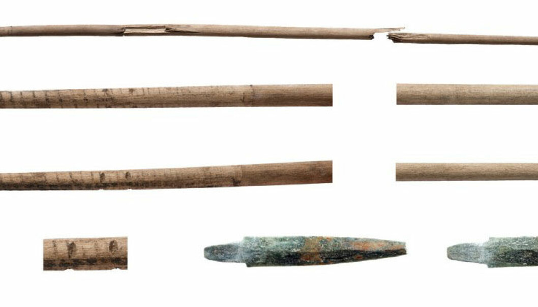 Radiocarbon dating of the sallow wood shaft of this arrow shows it to be 5,400 years old, dating it to the younger Stone Age. The arrow was found in the Norwegian mountains, at Dovrefjell, by Tord Bretten and Line B. Aukrust. (Photo: Åge Hojem and Martin Callahan/NTNU Museum of Science)