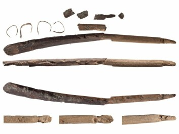 Fragments of bows from the early Stone Age that have melted out of glacial ice. (Photo: Åge Hojem and Martin Callahan/NTNU Museum of Science)