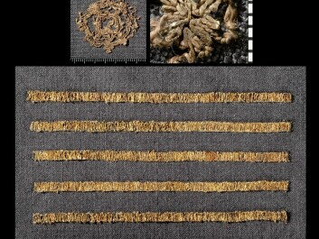 Much of the silk found in the Oseberg ship has patterns from the Persian Empire. Left: Thin strips of hammered gold wrapped around a highly exclusive silk thread. This silk may have come from even further east than Persia. Middle: This silk piece with a cross was possibly sewn locally or purloined from an Irish church. Right: Silk threads sewn into wool. May have been sewn locally. (Photo: KHM- UiO)