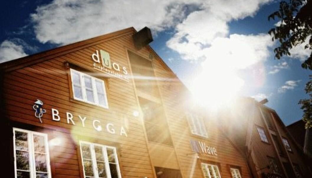 BRYGGA. (Photo: BRYGGA)