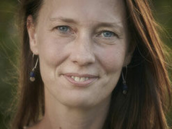 Ulla Toft says there is no doubt about the link between high salt consumption and heart disease. (Photo: Region Hovedstaden)