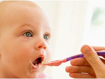 Once allowed to eat solid foods, babies often demand constant spoonfuls. (Photo: www.colourbox.no)