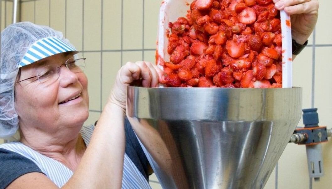 Berit Karoline Martinsen has produced jam from many different varieties of strawberry and raspberry. (Photo: Kjell Merok/Nofima)