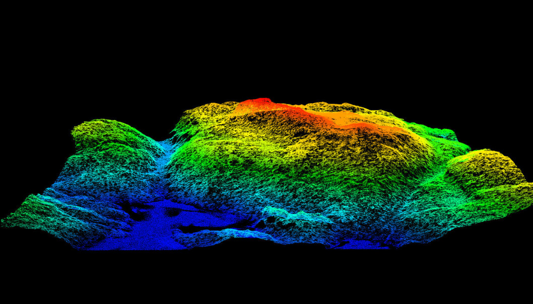 An example of a laser scan. Seen here is a terrain model of a hill called Tonekollen in Oslo's eastern woodlands, Østmarka. The data behind the graphics enable foresters to assess the value of timber, graphically differentiating types of trees and vegetation. This type of scan has now been shown to reveal where certain species of birds can be found. (Illustration: Hans Ole Ørka, NMBU)