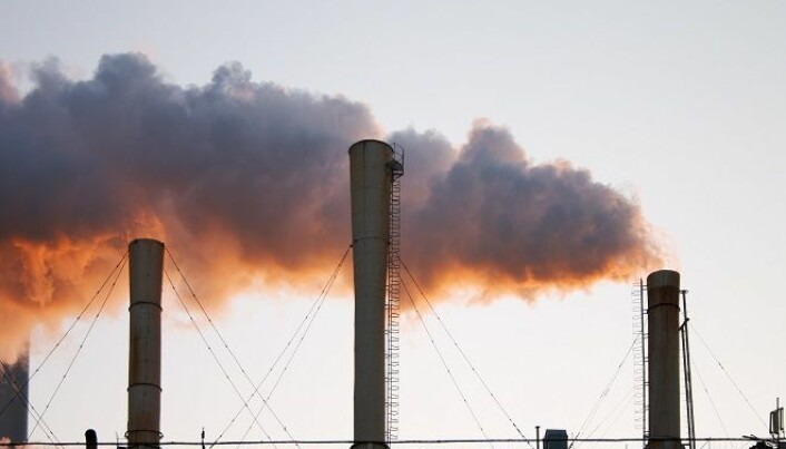 The sense and sensibility of carbon capture