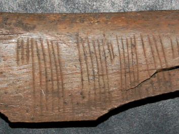 "A rather forthright message written in code: ""Kiss me"" is etched into a piece of bone found in Sigtuna in Sweden, dating to the 12th or 13th century. The code is in cipher runes, the most common code known from medieval Scandinavia. This variety is called ice runes. (Photo: Jonas Nordby)"