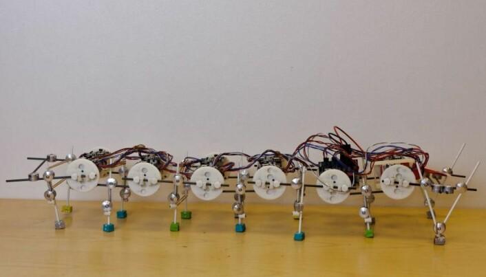 DIY kit makes building robots easy