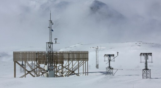 Measuring snowfall in windy mountain areas