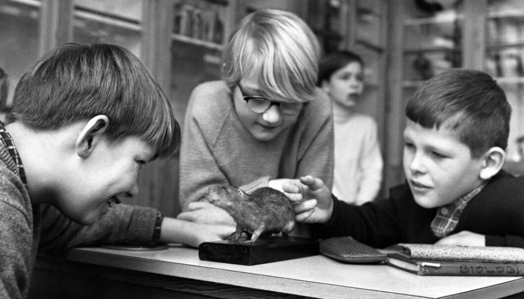 Science studies at Marienlyst School in Oslo in 1966. Back then, Norway had only seven years of compulsory education. (Photo: NTB Scanpix)