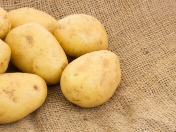 In 1959, the average Norwegian consumed about 88 kilos of potatoes a year. (Photo: Colourbox)