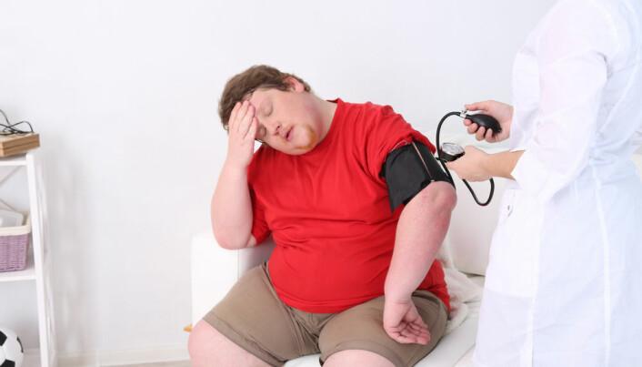 Danish researchers bust popular 'fat myth'